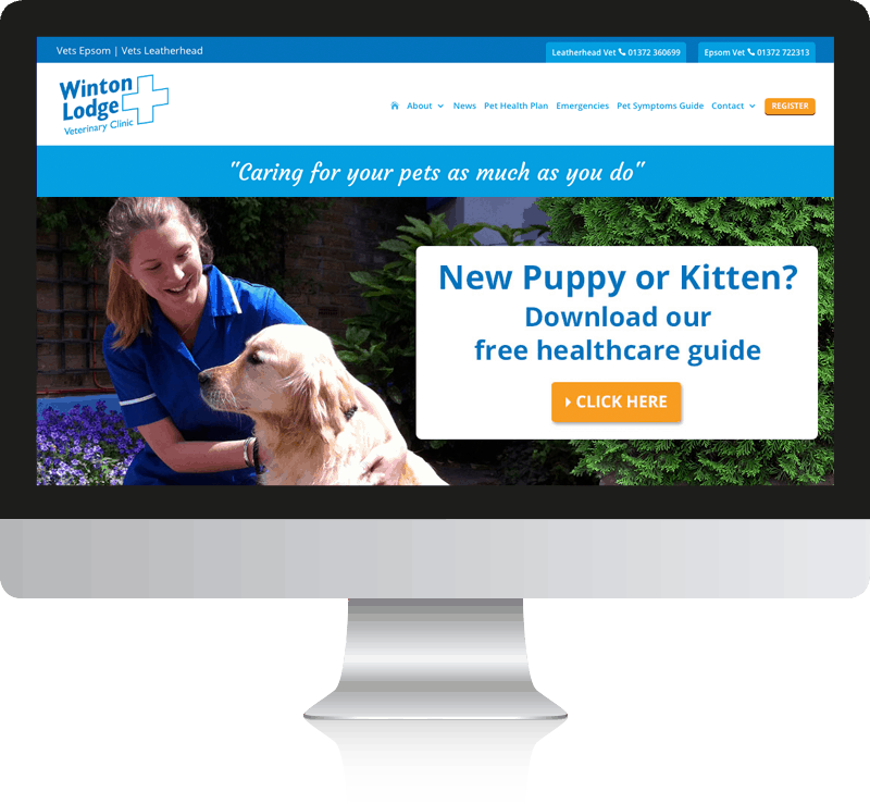 Vets Website Design for Winton Lodge