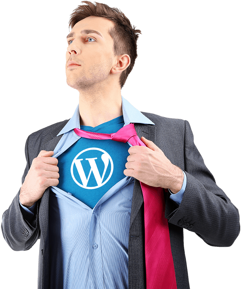 WordPress Developer London & Surrey