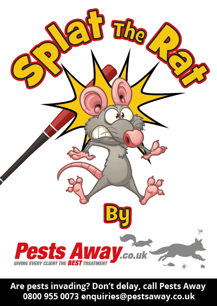 Pest_Away_Flyer-02