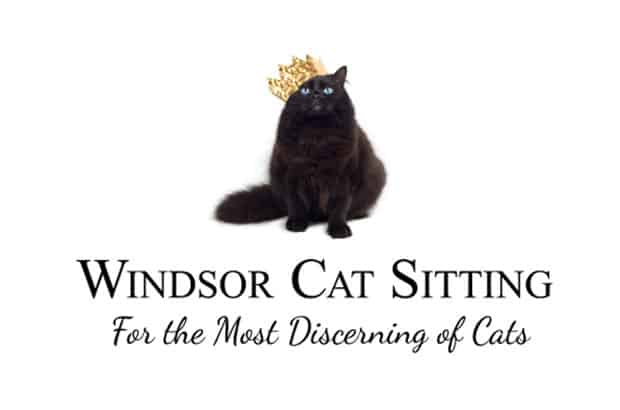 Windsor Cat Sitting